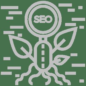 Organic-SEO-SilverT