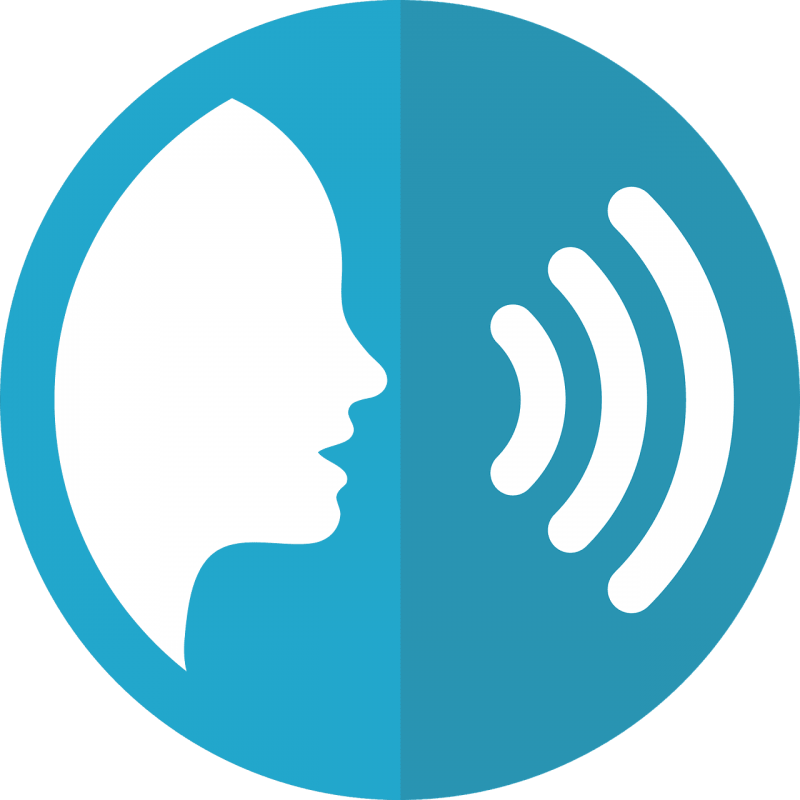 , All You Need to Know About Voice Search